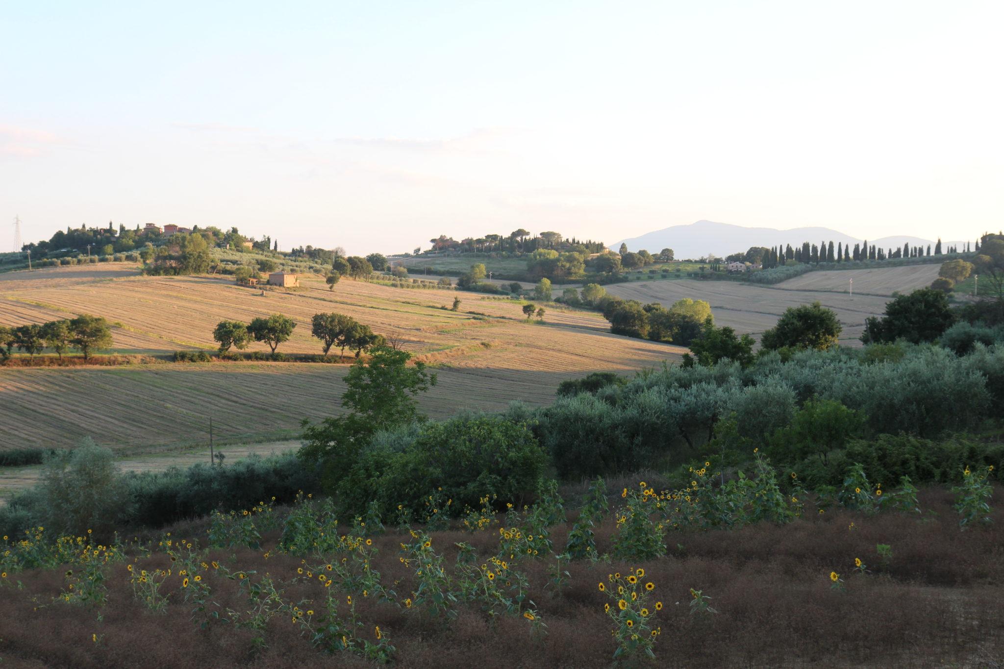Umbrialaista mökkimaisemaa ja focacciaa
